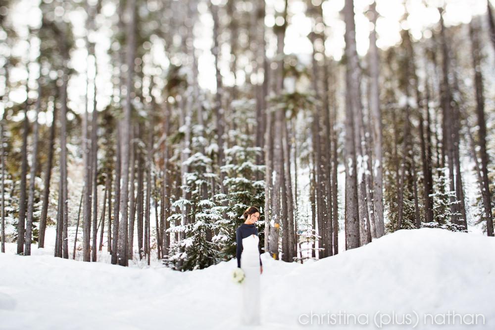 Winter Wedding Bride Lake Louise