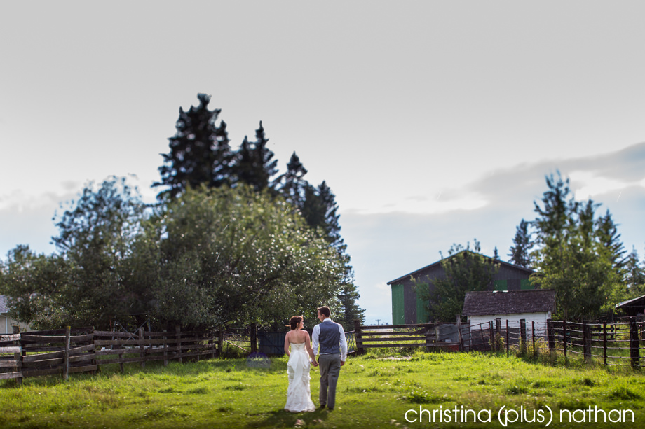 Calgary-wedding-photographers-farm-88