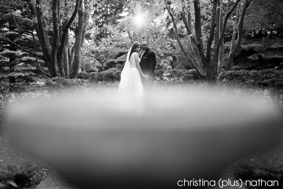Wedding photos at Gerry Shaw Gardens on Elbow Drive