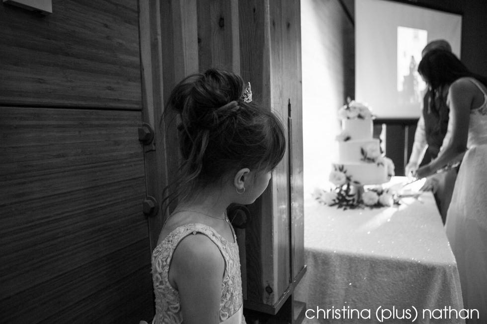 Wedding Cake Cutting Photographers