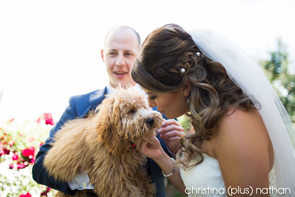 Bride kissing her dog before her Calgary wedding