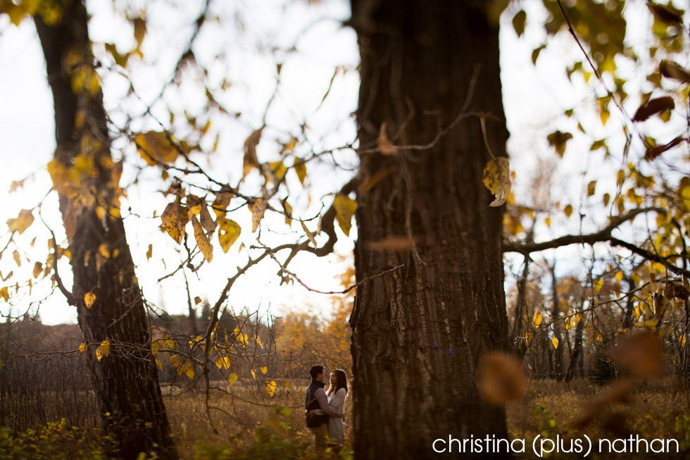 Fishcreek Park Engagement sessions