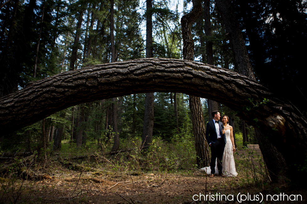 Wedding photo in Fish Creek Park photographed by christina (plus) nathan